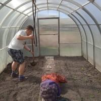 «Рука помощи».  Волонтёры помогают пенсионерам в огороде